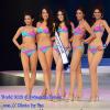 """30 สาวมิสไทยแลนด์เวิลด์ 2012 อวดโฉมเดินชุดว่ายน้ำ รอบสื่อมวลชน หมายเลข 14 ซิว """"นางงามรูปร่างดี"""""""