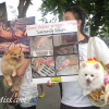 ไทยมิส แจมกลุ่มเพื่อนคนรักสัตว์เครือข่ายไทยโซเชี่ยลเน็ตเวิร์ค Facebook ร่วมผลักดัน พ.ร.บ.คุ้มครองสัตว์