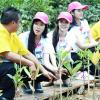 กิจกรรมมิสยูนิเวิร์สไทยแลนด์ 2013 Miss Universe Thailand ปลูกป่าชายเลน ป่าพรุ คลองสองน้ำ